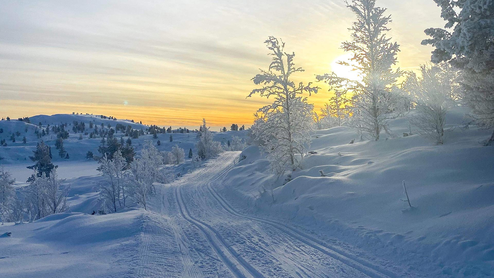 Skiing track.