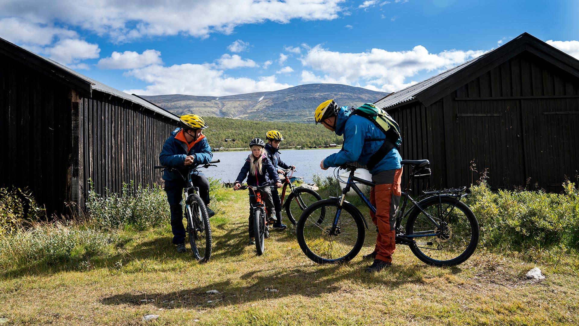 Family at bicycles.